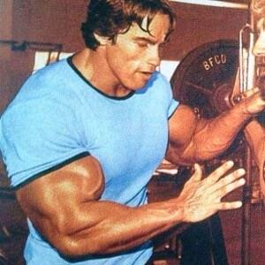 biceps schwarzenegger foto