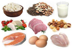 eiwitrijke maaltijden