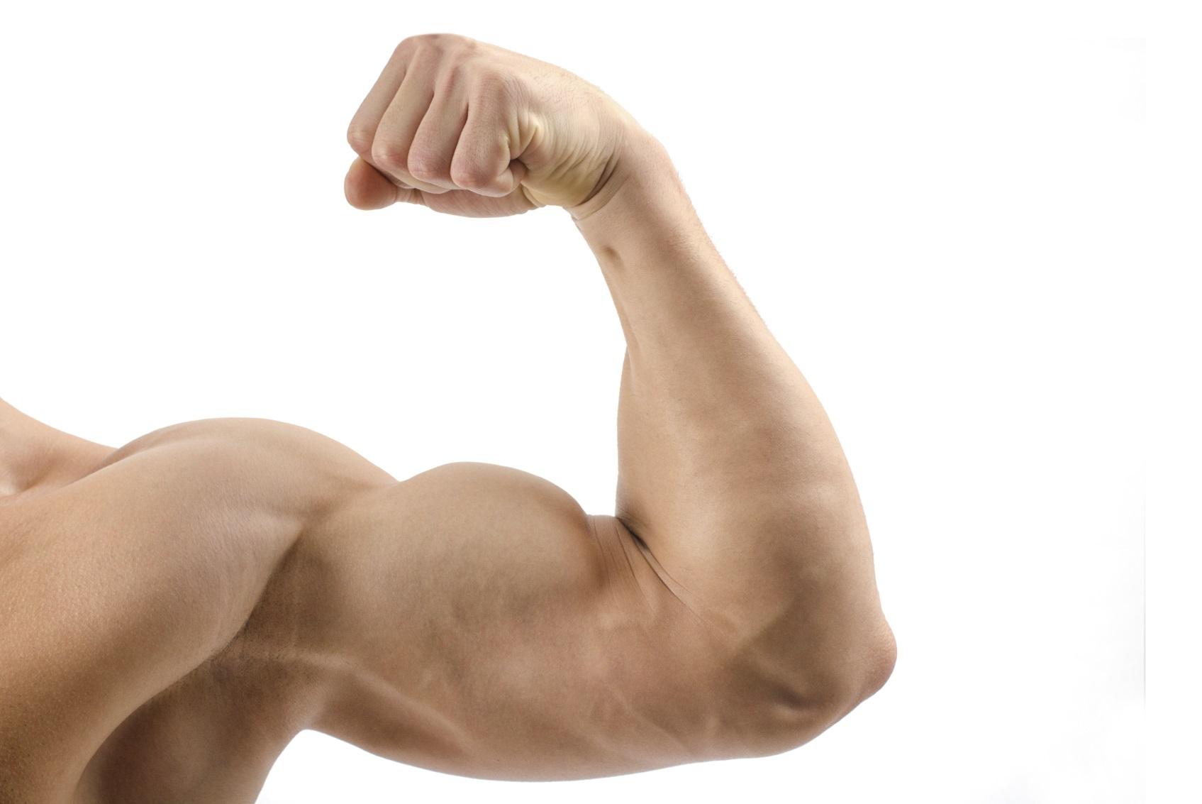 geen verlies aan spiermassa
