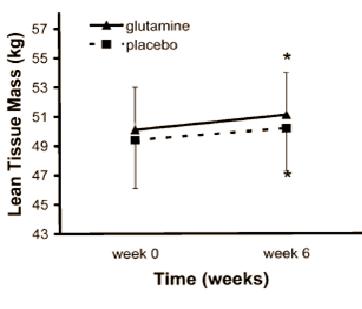 glutamine onderzoek resultaten