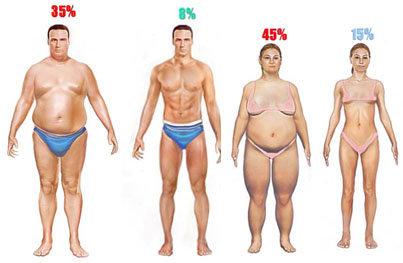 vetpercentage verschillen
